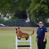 SECURITYDOGTRAINING@NATIONALDOGTRAININGCENTRE