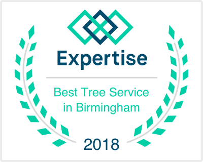 Best Tree Service in Birmingham Winner