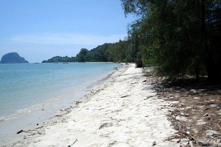 Beach Front land in Krabi