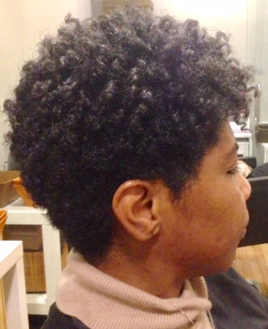 natural hair Silk Press texturizers relaxers flatiron NYC kinky curly