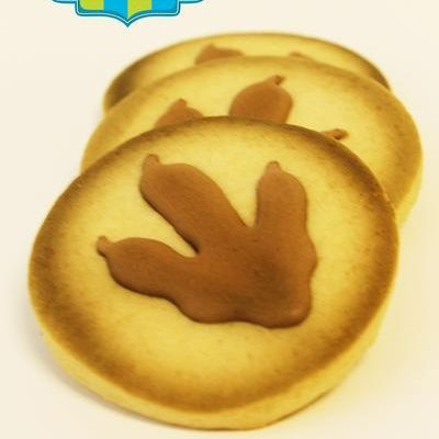 Dinosaur Footprint cookies milwaukee