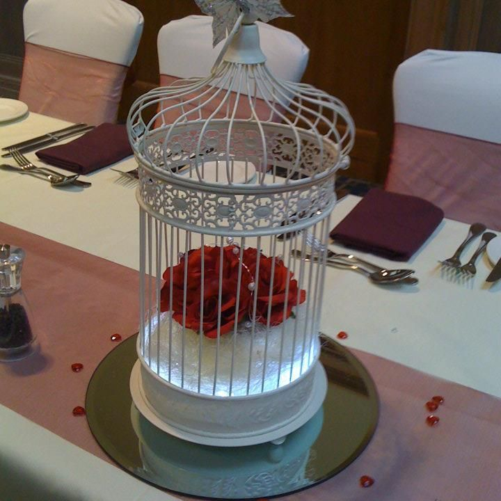 Birdcage filled with red roses and lighting