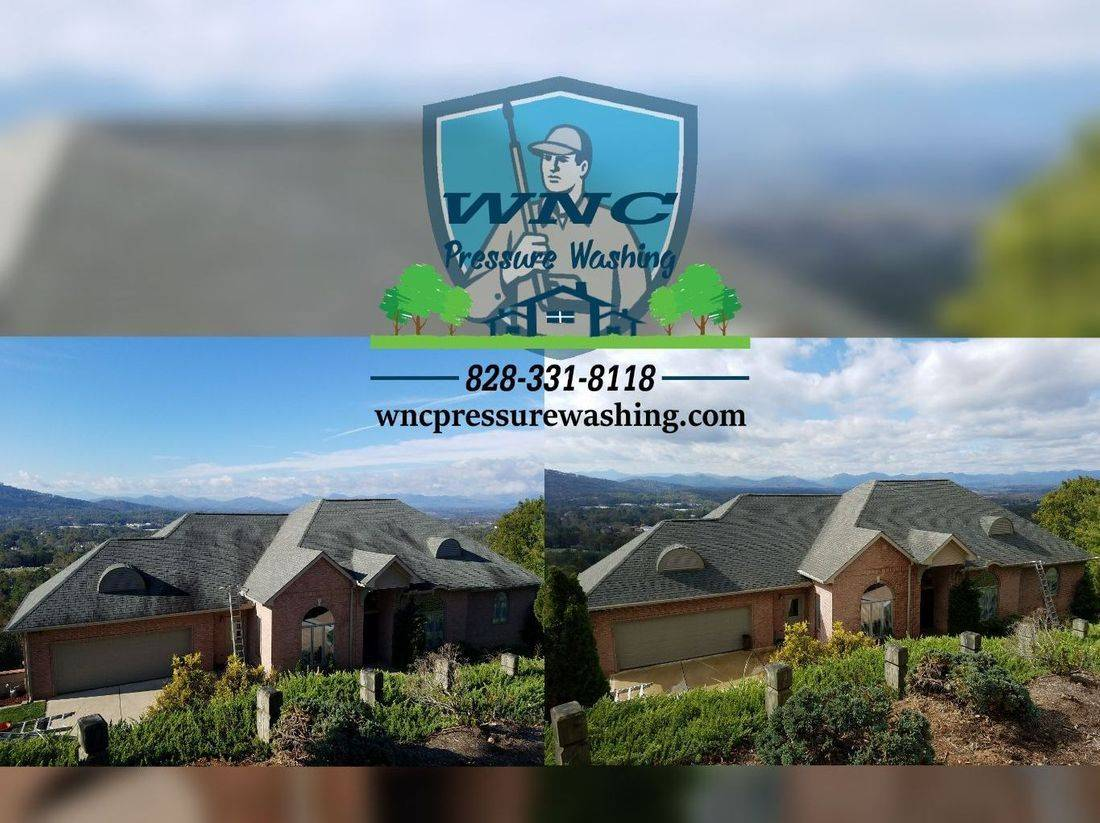 Roof Washing, professional roof cleaning, mold on roof, mildew and mold on roof