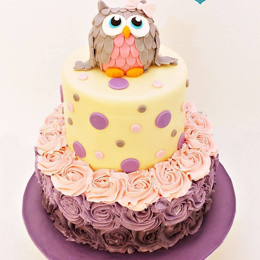 Custom Owl Rosettes Cake Milwaukee