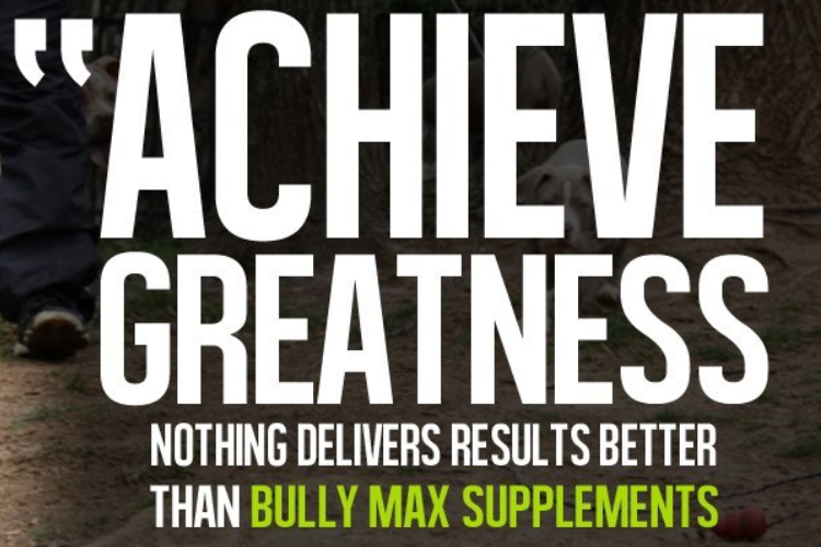 BULLY MAX SUPPLEMENTS CANADA