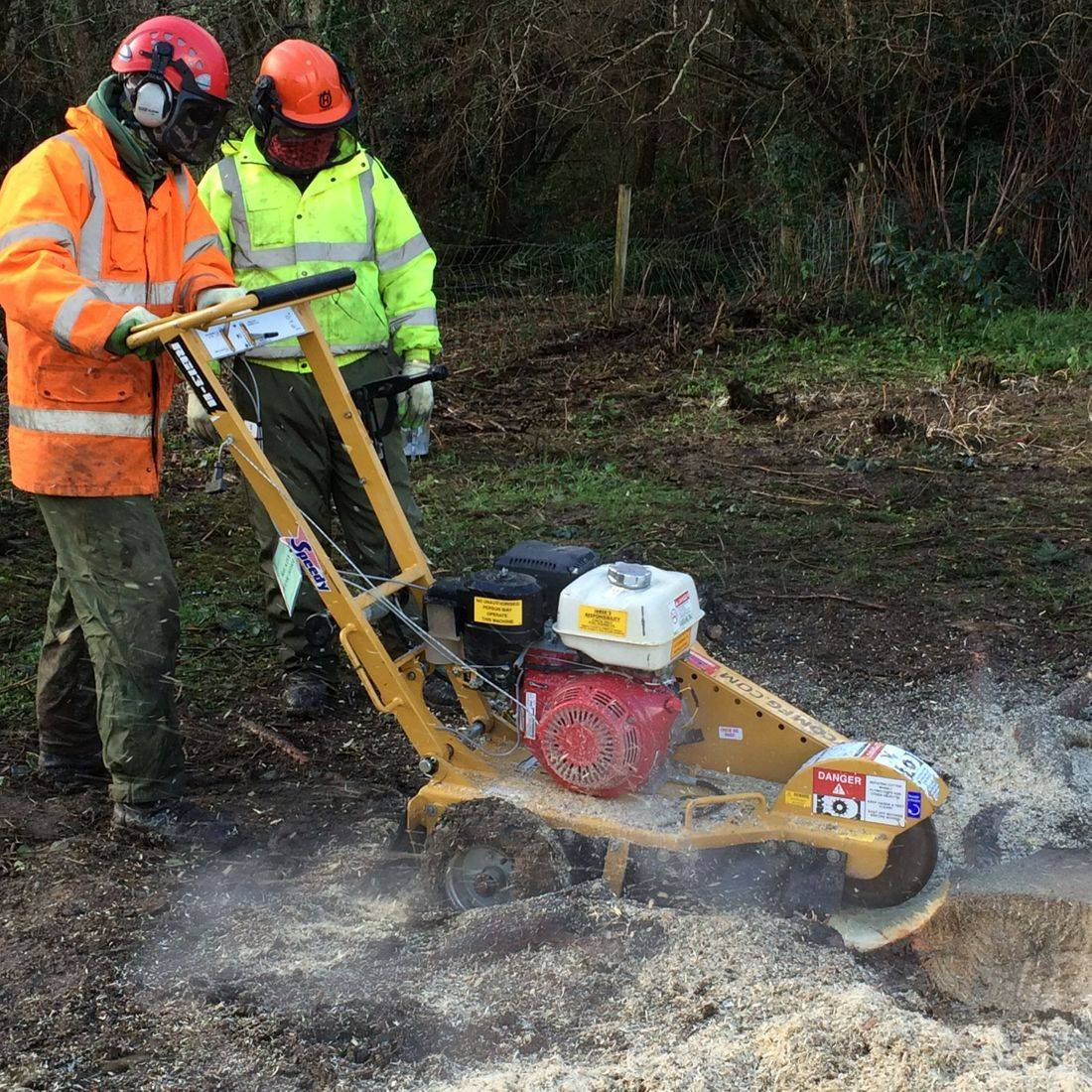 Stump Grinding North Devon