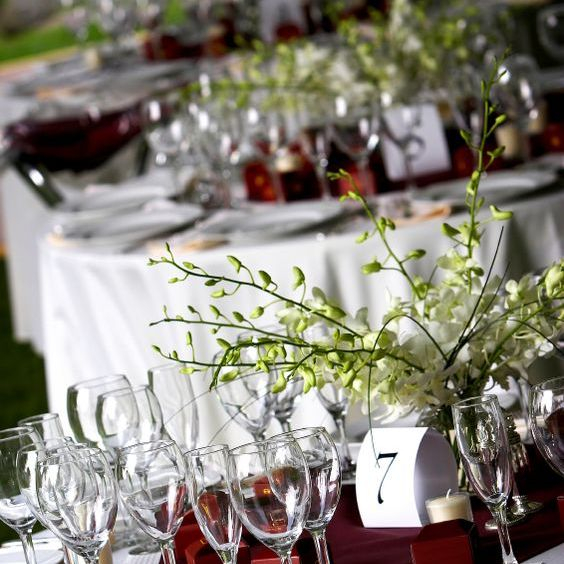 Fundraising and auction dinners and catering by ARISTA