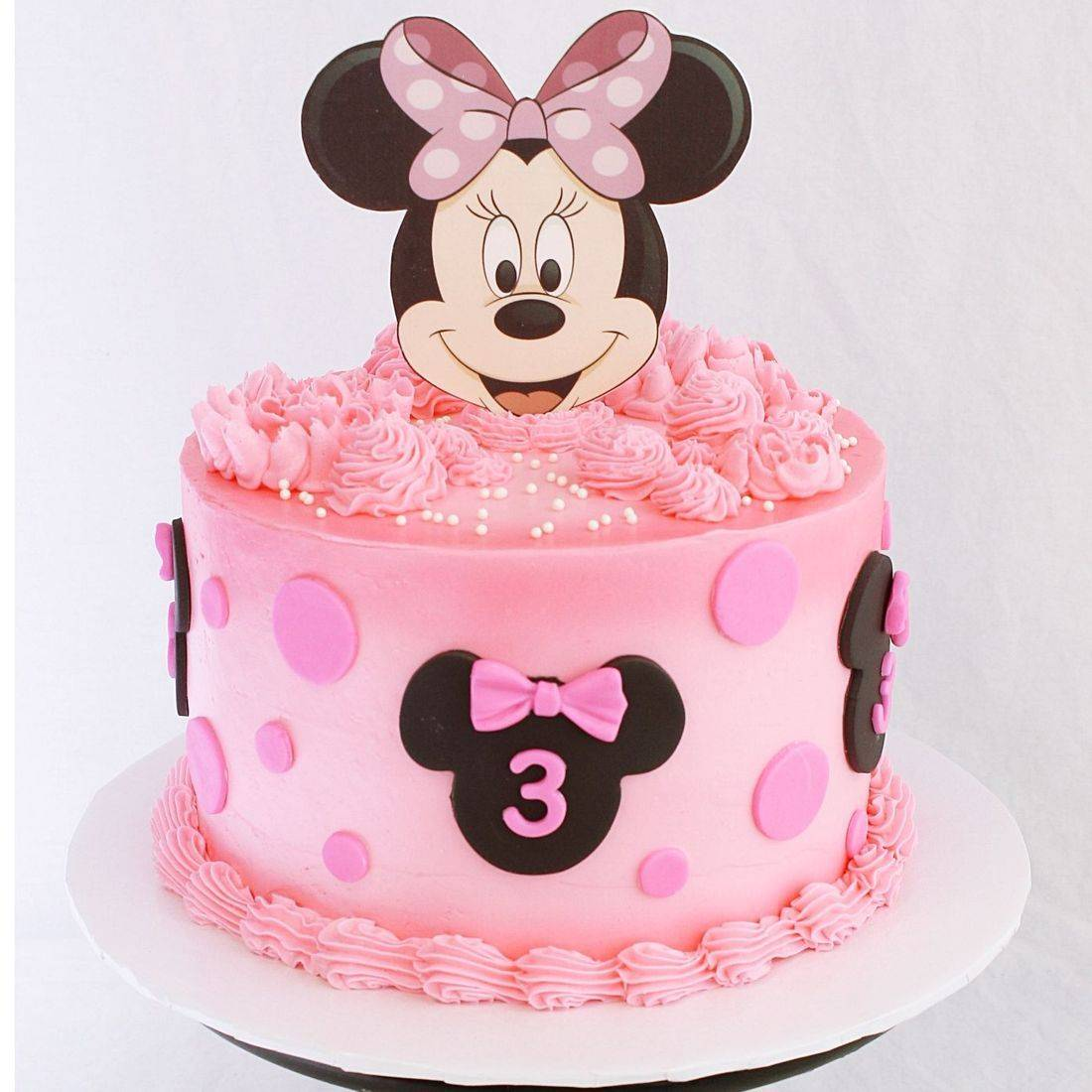 Minnie Mouse stylized cakes milwaukee
