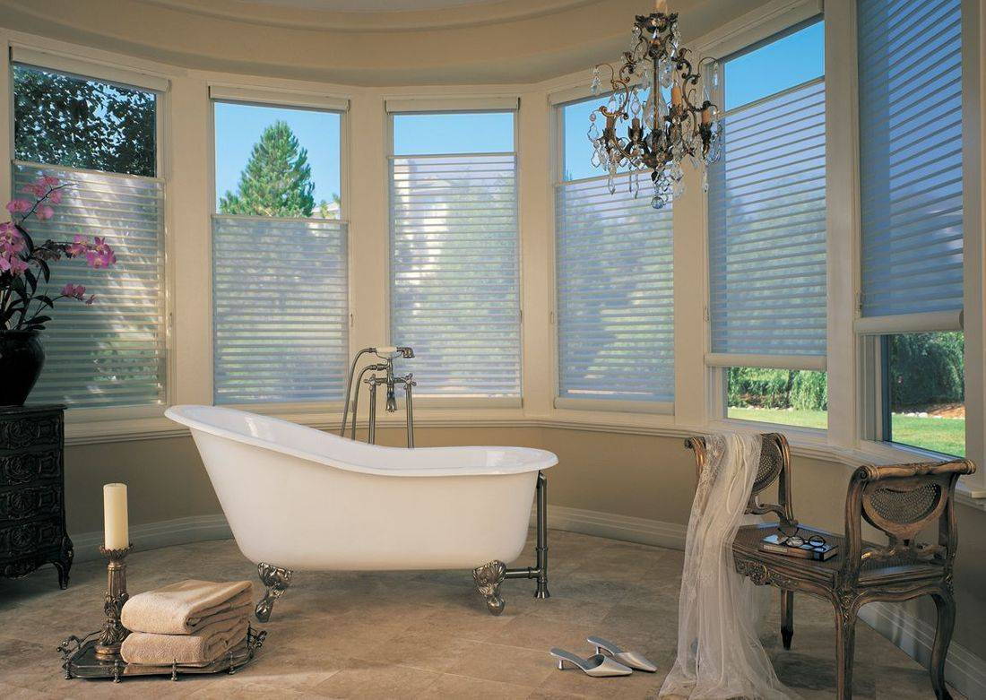 Hunter Douglas Silhouette Window Shadings are a beautiful way to balance light control with privacy.