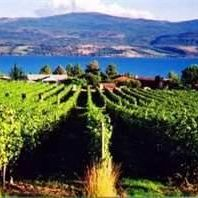 Wine Tours Open all year round