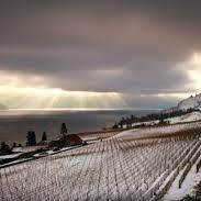 Winter Wine Tour Kelowna