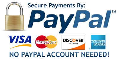secure paypal payment visa amex mastercard