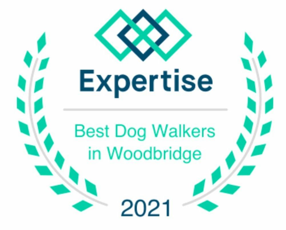 Best Woodbridge Dog Walkers and Pet Sitters
