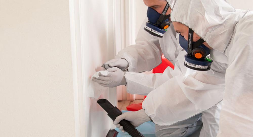 mold inspection Oakland CA