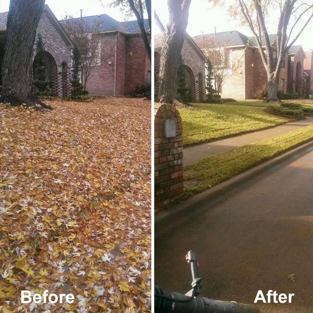 leaf clean up San Antonio, Texas
