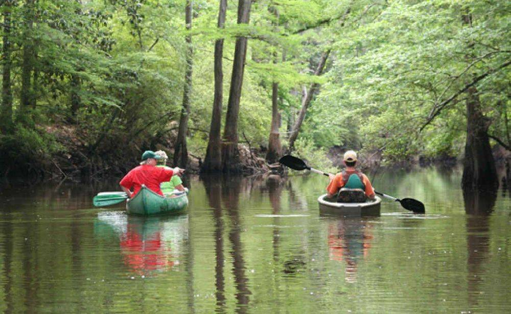 scenic, paddle, canoe, kayak, fishing, river