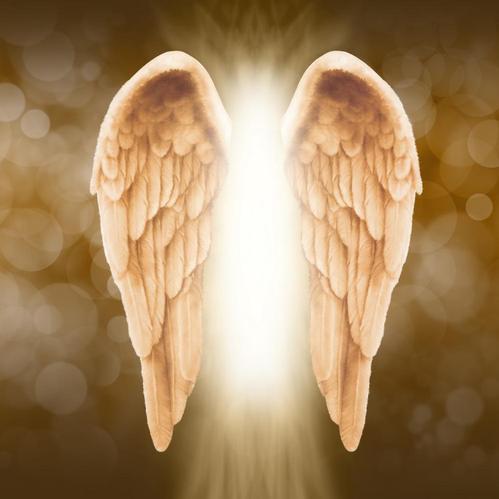 Masterclasses, Classes, Classes On-Demand, Guardian Angels