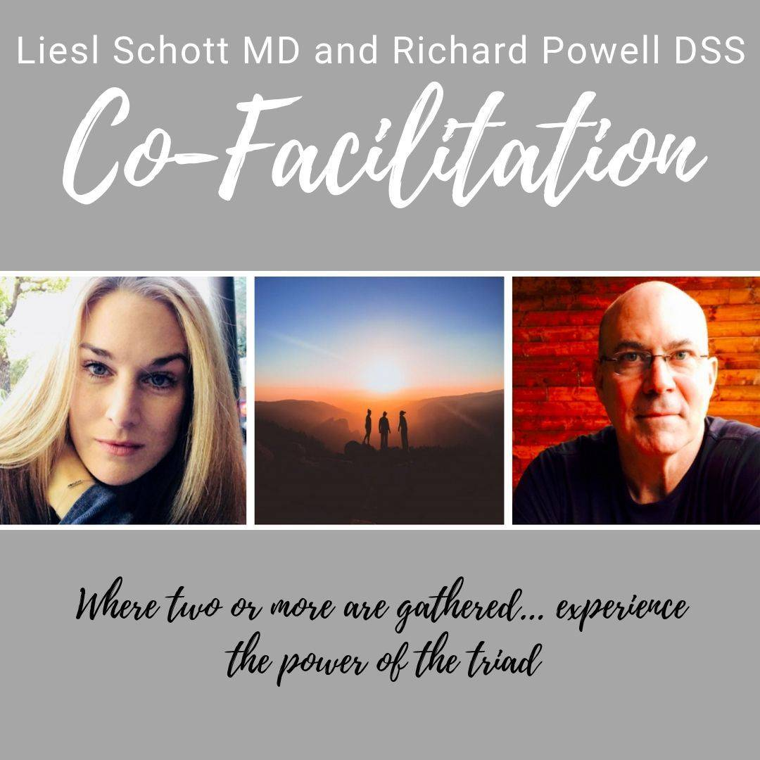 The Triad Co-Facilitated Session: Liesl Schott MD and Richard Powell DSS bring together powerful skills in a multifaceted co-facilitation approach. (Coaching & Counseling)