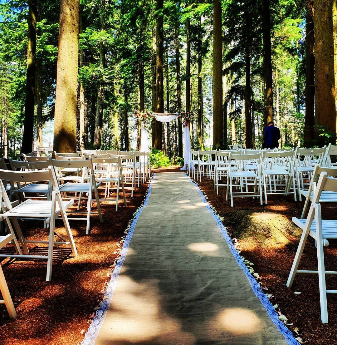 Outdoor wedding venues in the New Forest