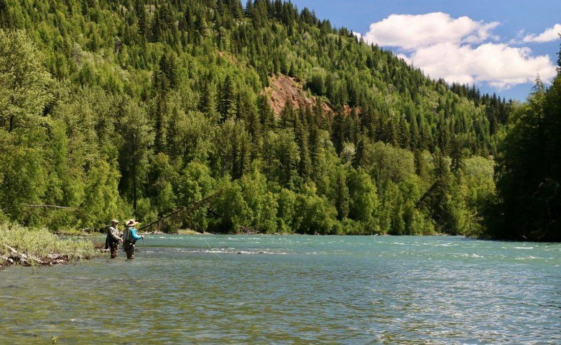 Hosted Trips, McLennan, Instruction, fly fishing