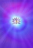 Healing with Reconnective Energy
