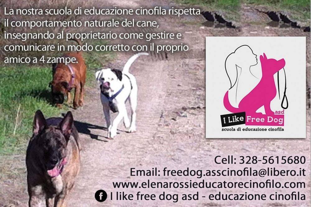 I LIKE FREE DOG ASD scuola di educazione cinofila