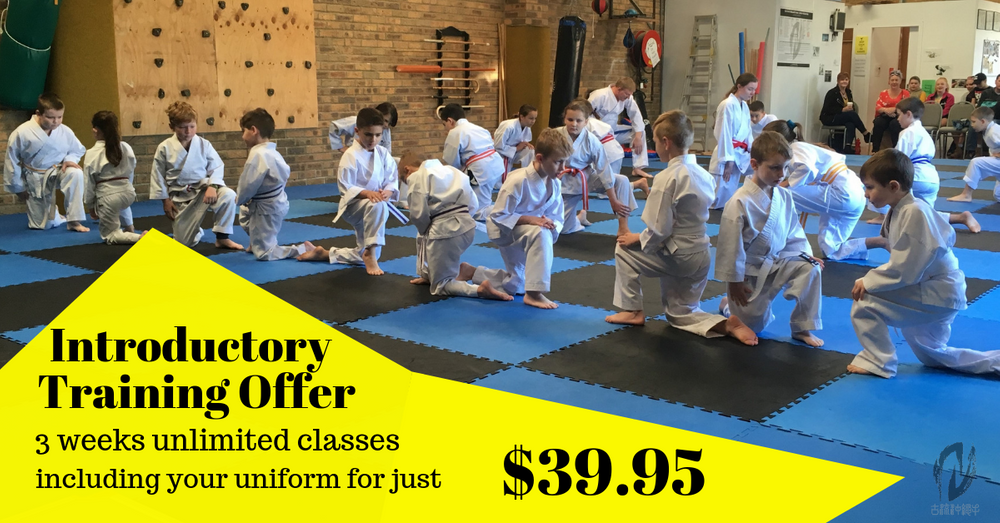 Introductory training offer
