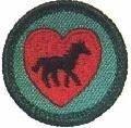 Horse Fan Badge Girl Scout Badge Clinic Edinger Farm, Rehoboth MA