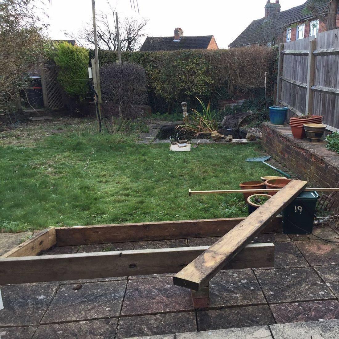 Hampshire garden plant advice