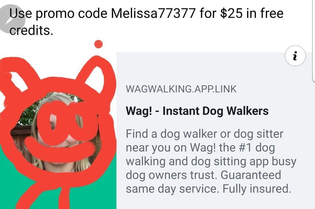 Dog walker free credit