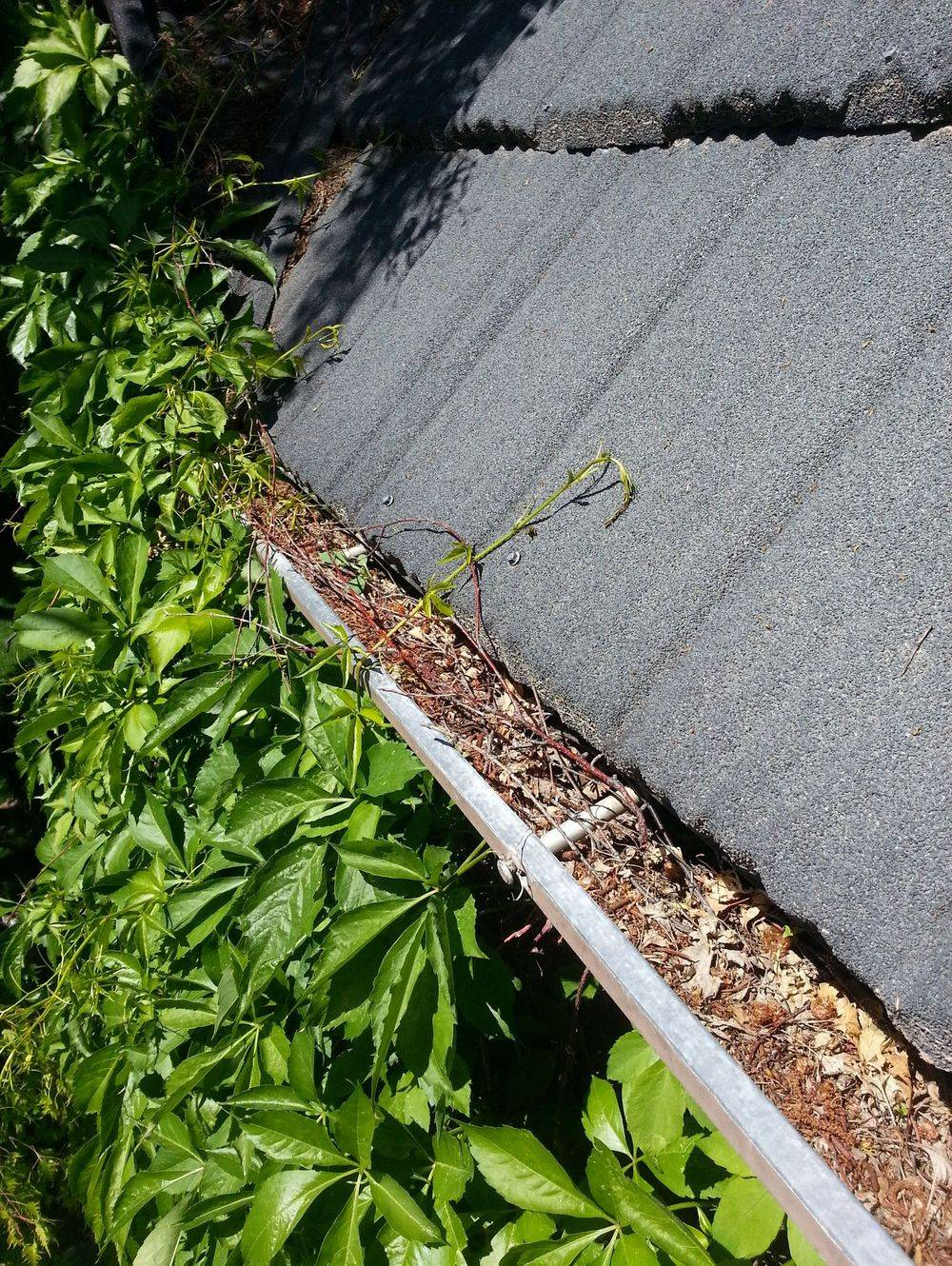 Eaves Trough Cleaning Lethbridge