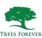 Tree Service Des Moines
