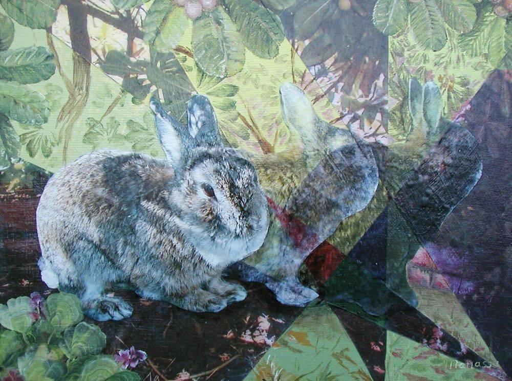 Ghost Rabbit 1
