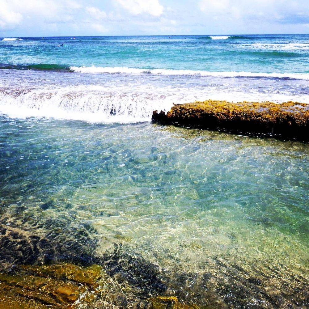 Surf, Spot de surf, Tartane, Martinique