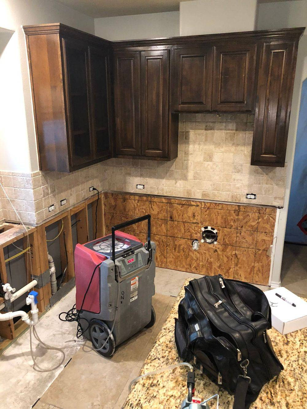 Mold testing, mold consultant, mold remediation, my Consultant