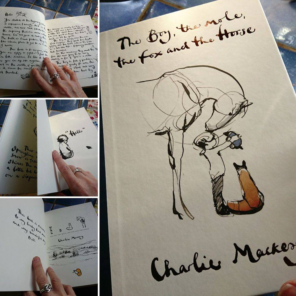 The Boy, The Mole, the Fox and the Horse book by Charlie Mackesy