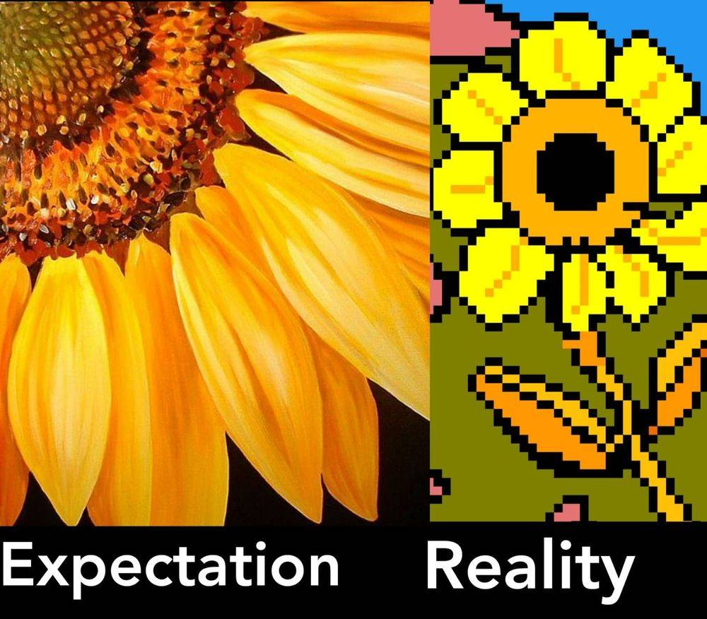 Expectation vs Reality Effecting your happiness