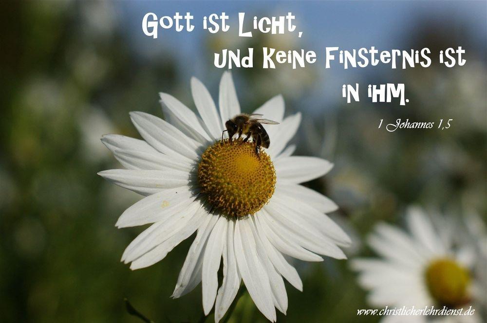 """Gott ist Licht """"Und das ist die Botschaft, die wir von ihm gehört haben und euch verkünden, dass Gott Licht ist, und in ihm ist keinerlei Finsternis."""" 1 Johannes 1,5"""