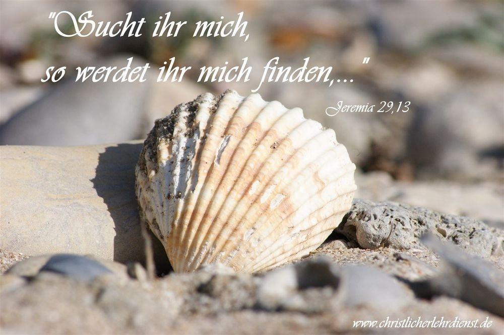 """Suchen wird belohnt """"Sucht ihr mich, so werdet ihr mich finden...."""" Jeremia 29,13 Meiner Einschätzung nach ist dies das größte Versprechen, was Gott uns gibt. Wer möchte nicht den Schöpfer, den Gott des Universums persönlich kennen lernen und Zeit mit ihm verbringen? Wie oft haben wir schon vergeblich in unserem Leben nach Dingen gesucht und sie nicht gefunden. Doch Gott selbst gibt uns die Zusage das wir ihn finden.Die einzige Voraussetzung hierfür ist ihn zu suchen. Dies sollte uns motivieren, da wir wissen das unsere Suche belohnt wird."""