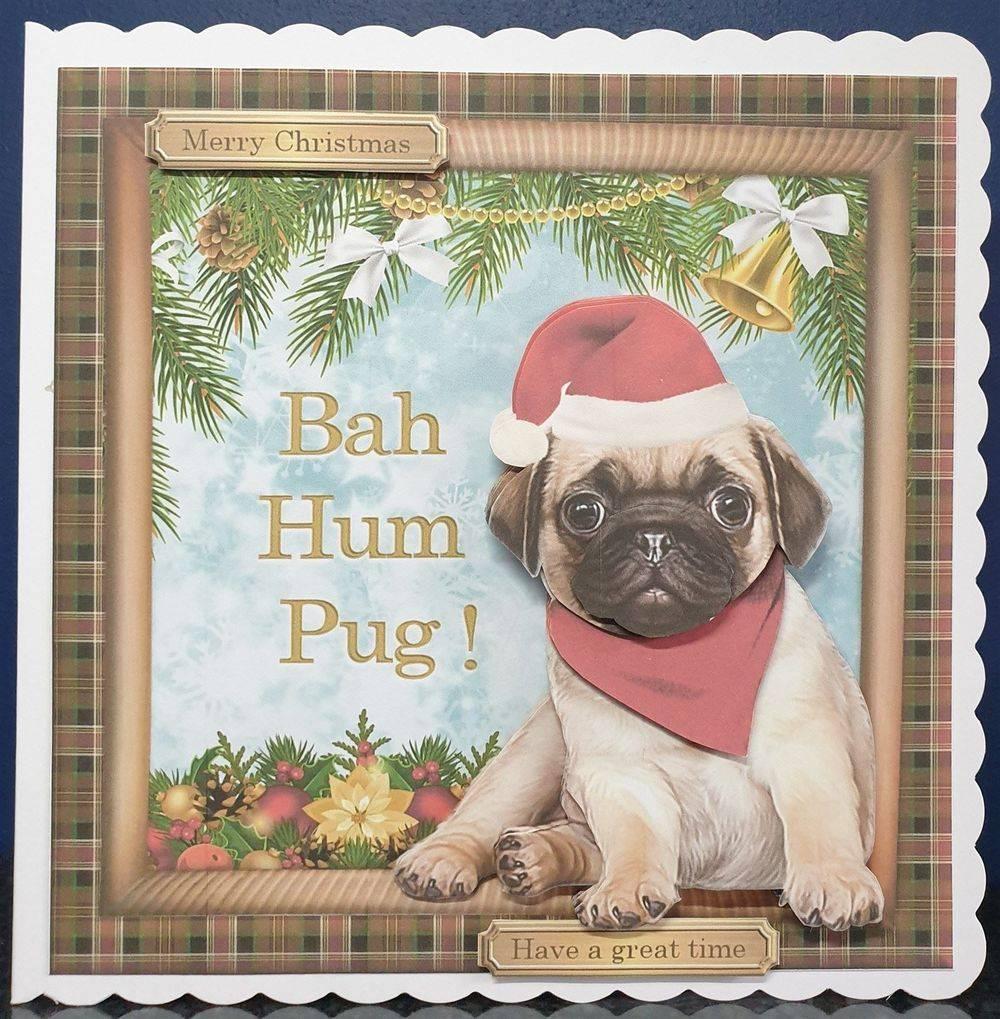 Bah Hum-Pug
