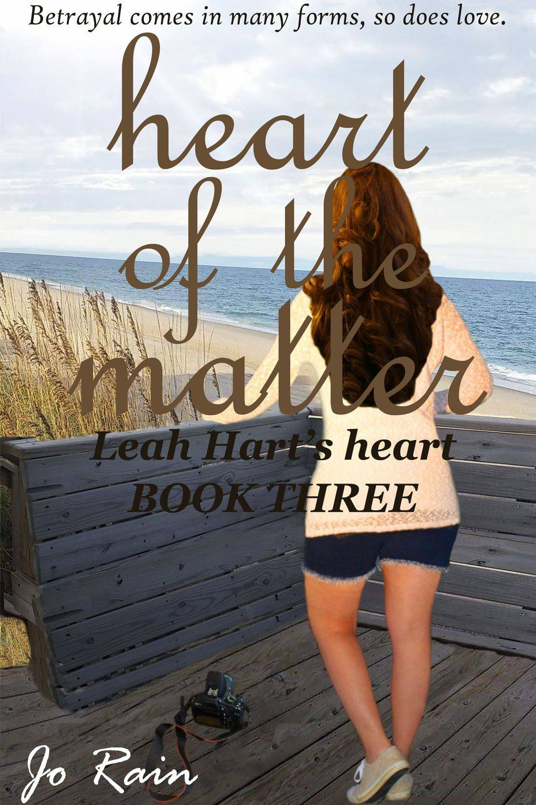 jo rain, leah hart's heart, leah hart series, heart of the matter, romance mystery