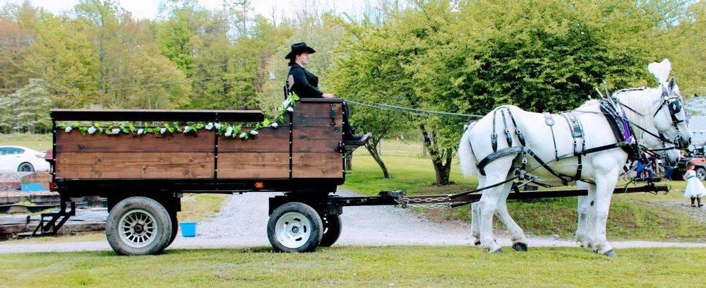 Horse Drawn Wagon for Weddings