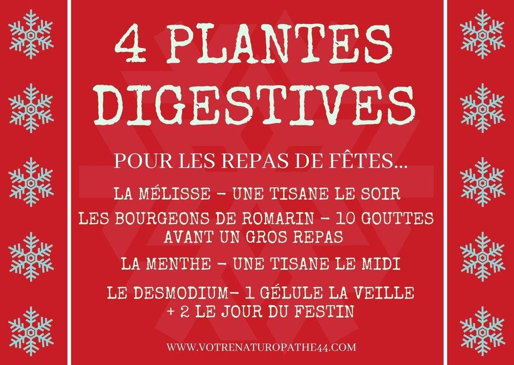 fiche pratique naturopathie santé bien être 4 plantes digestives