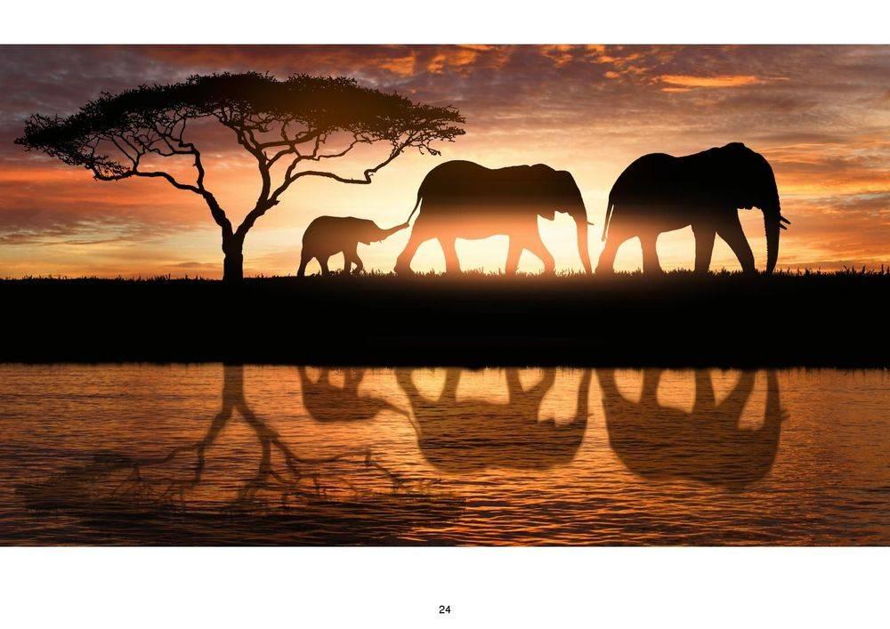 kiwano travel , kenya investments , tanzania investments , mozambique investments , uganda investments ,zimbabwe victoria falls ,malawi 5 star resort in the lake ,salima lakefront malawi, kamuzu international airport , british & far east traders & partners, new nordic africa, african investments