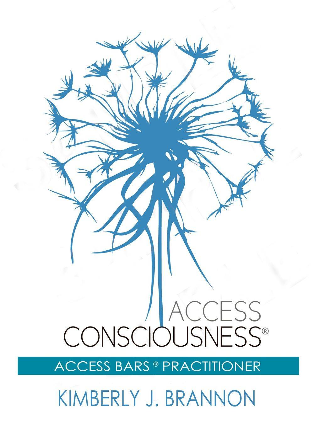 Kimberly J. Brannon Moonhand Healing Access Consciousness Bars