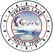 Pyramid lake, Orvis, Lohantan Cutthroat, Trout, Orvis Endorsed pyramid lake, fly fishing pyramid lake, trout, huge, huge trout,