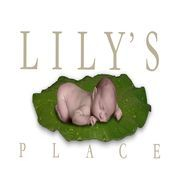 Lily's Place Neonatal Abstinence Syndrome Center, lilys place, neonatal abstinence syndrome, NAS, addiction, withdrawal, treatment, counseling, huntington, wv