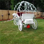 DREAMS COME TRUE DDING CARRIAGE IS NOW AVAILABLE Book early Limited space