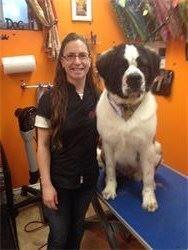 Lisa Higginson & West Highland Terrier,Petstyles Plus,Certified Dog Groomer