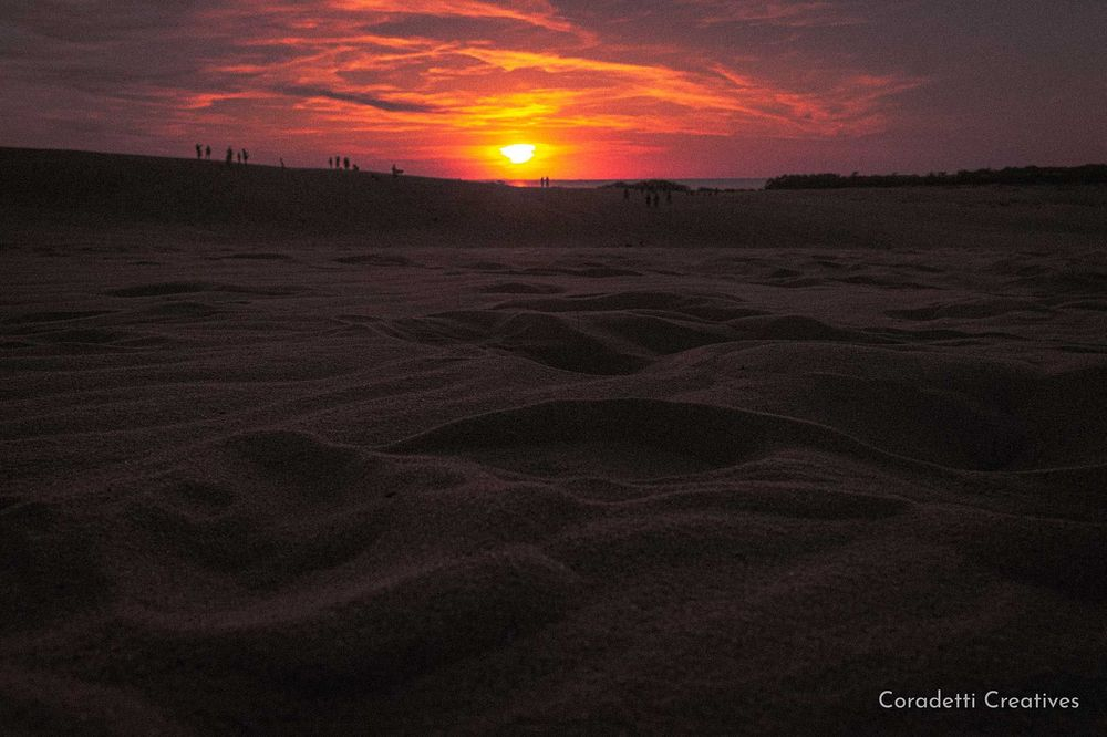 Coradetti Creatives - Nature Photography - Jockey's Ridge - Outer Banks - North Carolina